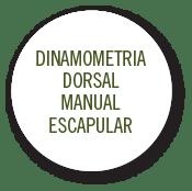 dinamometria